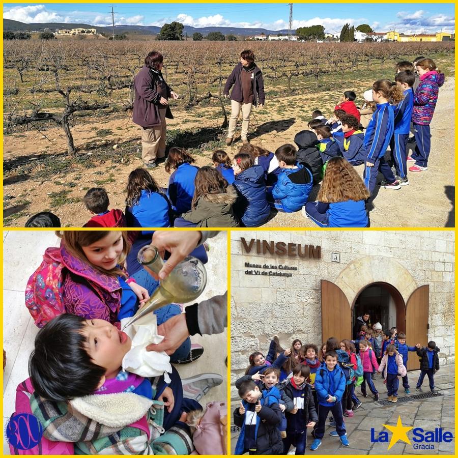 La vinya i el món rural (2n de primària)
